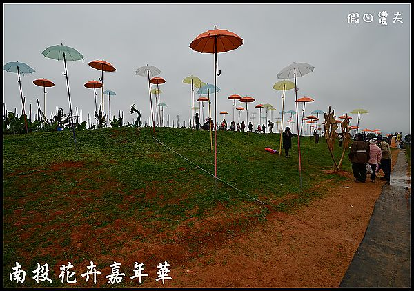 南投花卉嘉年華DSC_6400