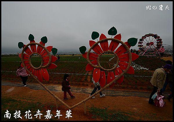 南投花卉嘉年華DSC_6405