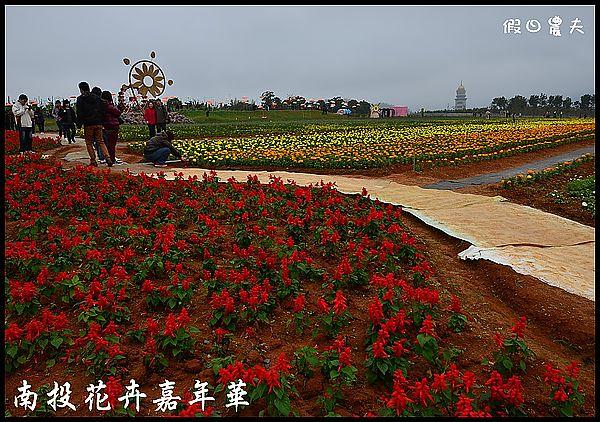 南投花卉嘉年華DSC_6412