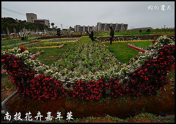 南投花卉嘉年華DSC_6418
