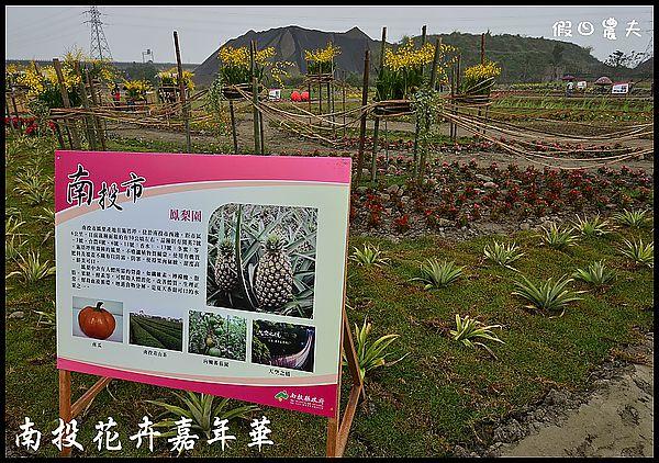 南投花卉嘉年華DSC_6436