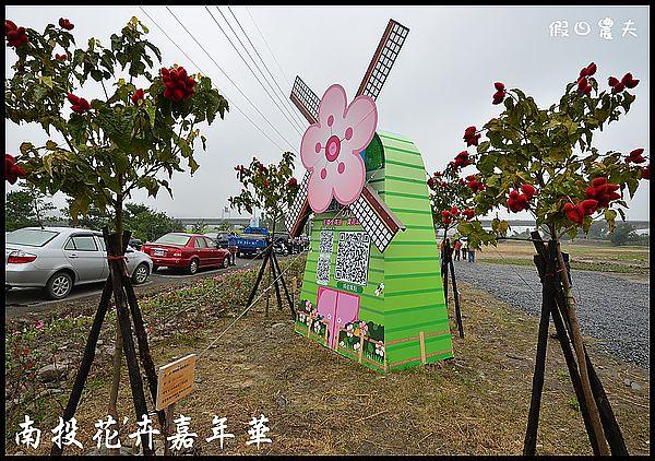 南投花卉嘉年華DSC_6432