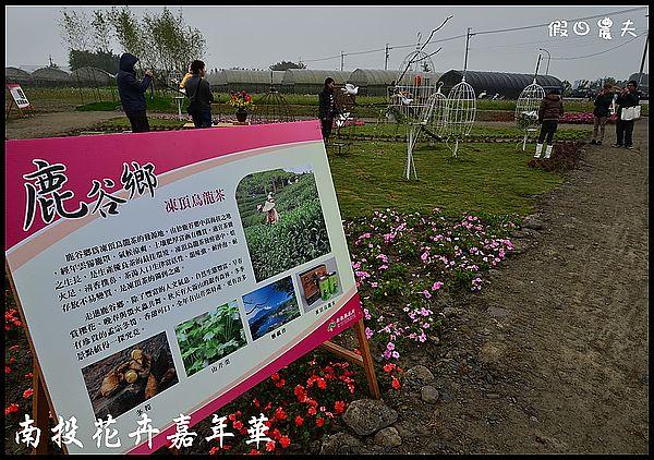 南投花卉嘉年華DSC_6440