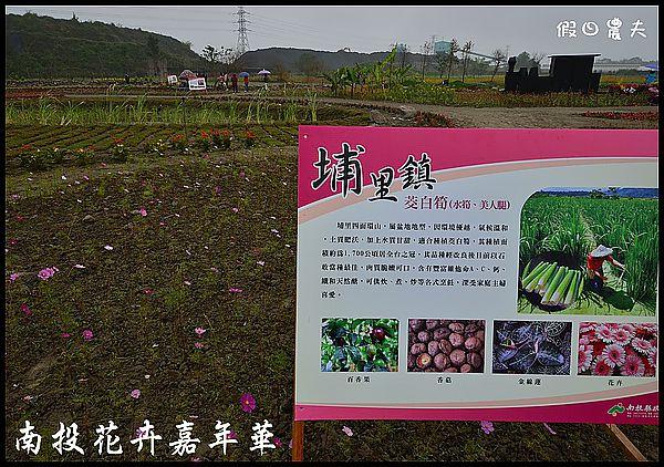 南投花卉嘉年華DSC_6438