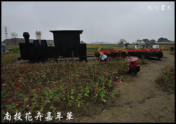 南投花卉嘉年華DSC_6441