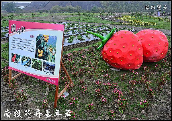 南投花卉嘉年華DSC_6460