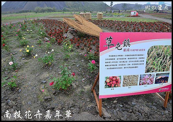 南投花卉嘉年華DSC_6462