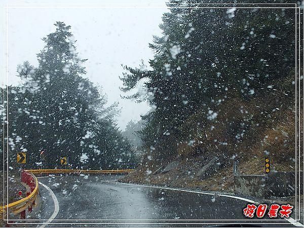 合歡山下雪了DSCF9288
