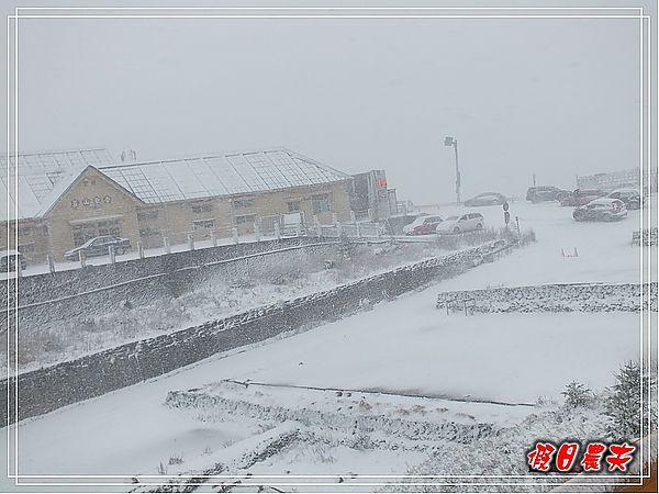 合歡山下雪了DSCF9527
