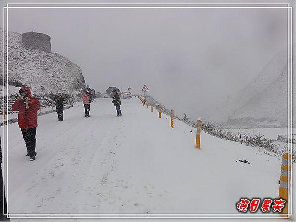 下雪了DSC09130