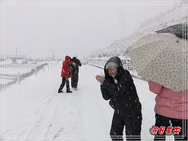 合歡山下雪了DSC09123