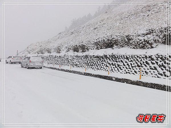 合歡山下雪了DSC09128