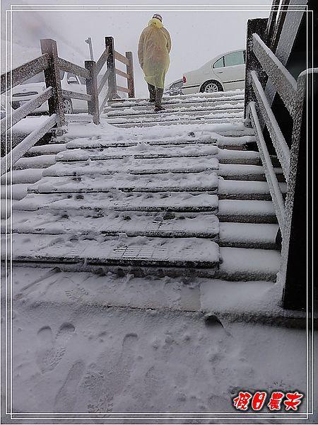 合歡山下雪了DSC09133