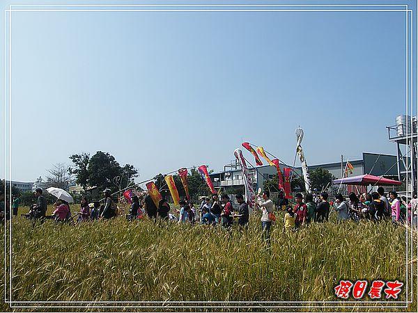 大雅小麥-趙家窯DSCF2692