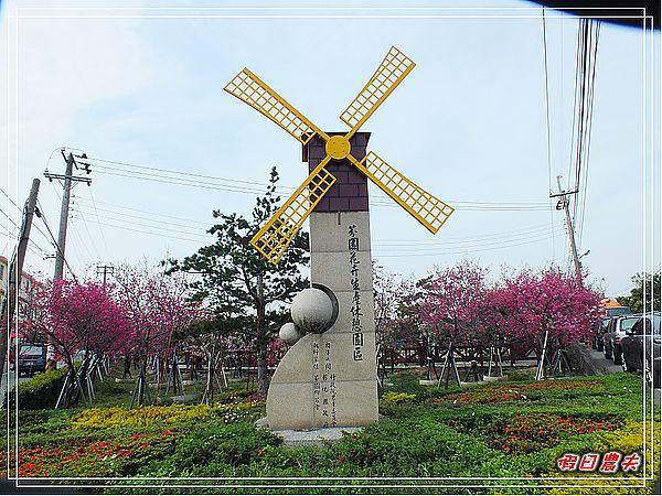 芬園櫻花DSCF8803
