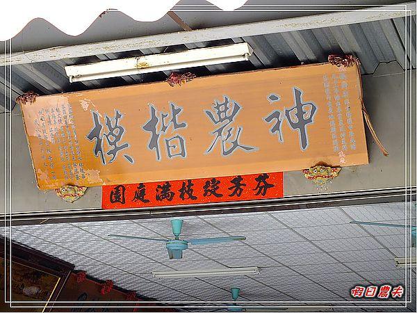 芬園櫻花DSCF8843