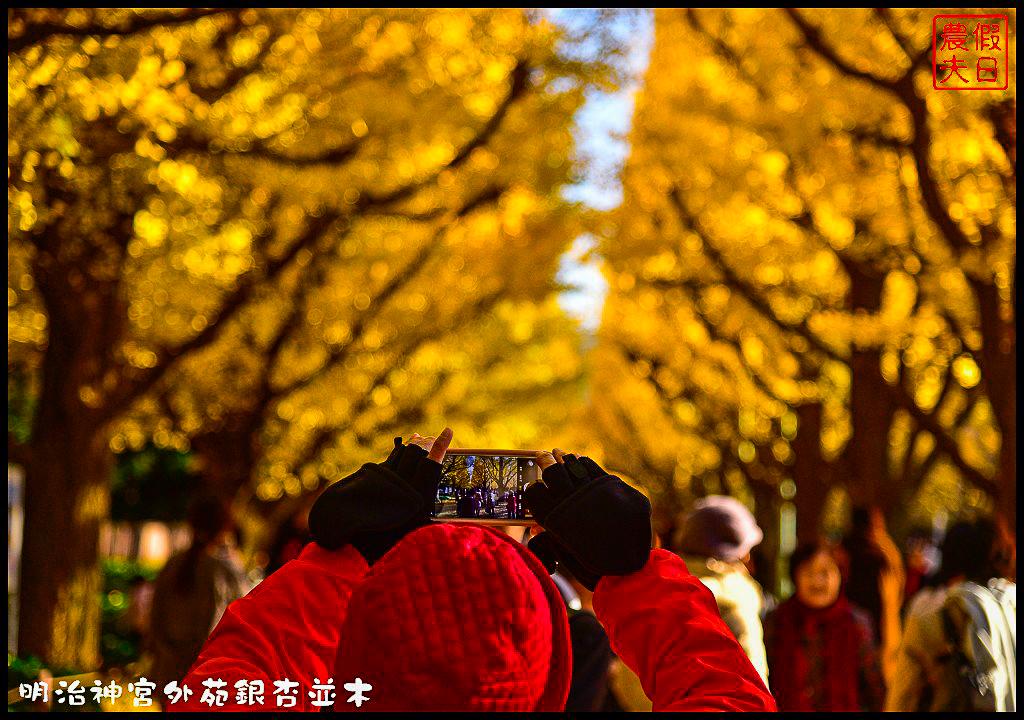 東京旅遊|明治神宮外苑銀杏並木.季節限定的黃金大道